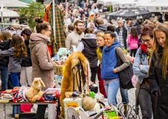 FotostudioSaschaBraun-LimburgerFlohmarkt2017-CityRing-7524