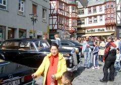 fruehlingserwachen1_20070820_1744493452